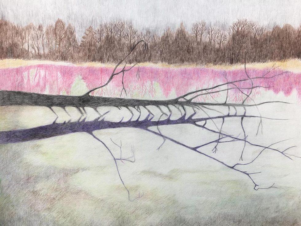 Ast im Wasser. Zeichnung. 2021